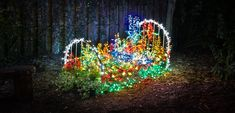 Garden of Lights Sponsors – 2018 - Heathcote Botanical Gardens Garden Of Lights, Botanical Gardens, Thankful, How To Make