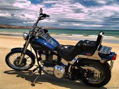 Harley Davidson Softail Custom The Beach