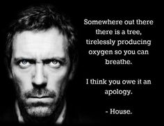 I think you owe that tree an apology...