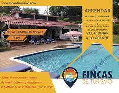Outdoor Decor, Home Decor, Private Pool, Private Property, Ensuite Bathrooms, Condos, Hotels, Trash Bag, Campsite
