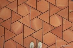 Teselado Girasol | Spanish Revival Architecture, terracotta floor tiles.