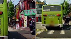 버스에 깔린 여학생 목숨 구한 '스쿠터 아저씨' (영상) #insight