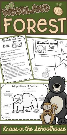 Are you teaching your students about the Woodland Forest habitat, animals, and their adaptations? This resource if for kids and has habitat activities, worksheets, graphic organizers, and posters to learn about the Woodland Forest animal adaptations and facts. #woodlandforest #habitats #forestanimals #animaladaptations