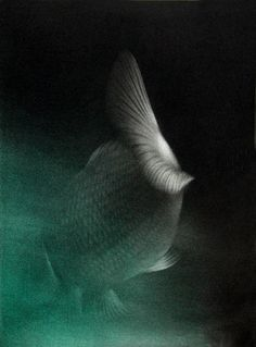 "Mikio Watanabe mezzotint  ""Memory of Water"""