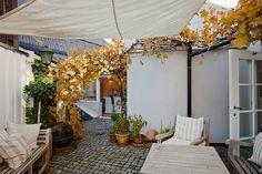 Backyard in Ystad, Sweden