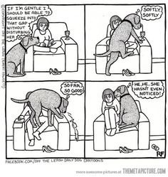 this reminds me of my dog lol