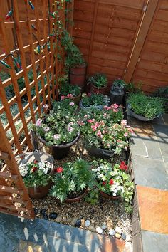 #The Victorian Terrace Garden (11) http://lawngardeningideas.com/