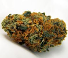 Which Strain Of Weed Are You? girl scout cookie