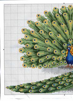 Gallery.ru / Фото #60 - Cuadros 50 - tymannost Cross Stitch Bird, Cross Stitch Animals, Cross Stitch Flowers, Counted Cross Stitch Patterns, Cross Stitch Designs, Cross Stitching, Cross Stitch Embroidery, Embroidery Patterns, Cross Stitch Pictures