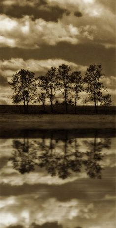 landscape photography fine art photography sepia brown