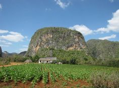 Island Legacy Novels: They're like taking a trip to the Caribbean. Romance, History & Missions in the DR, Haiti & Cuba. Visit me at www.terimetts.com and check under Novels. Vinales, Mojito, Cuba, Haiti, Hostel, Trip Advisor, Mount Rushmore, Caribbean, Freedom