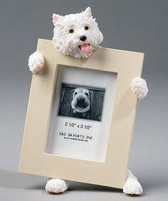 Take a look at this Westie Frame by E & S Imports on #zulily today!