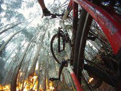 GoPro fan Filipe Fernandes encountered a bit of a road block on his mountain bike ride in Portugal!
