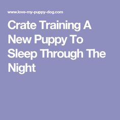 Make sure that you check out my website for excellent tips on dog training at bestfordogtraining.com