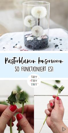 Do It Yourself Discover Ideas Plexus Products, Earthy, Bridal Hair, Diy And Crafts, Projects To Try, Diys, Kindergarten, Post, Magpie
