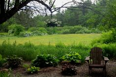 White Geranium and Hostas looking out to the Pasture