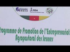 Cameroun, La jeunesse au coeur des programmes agricoles