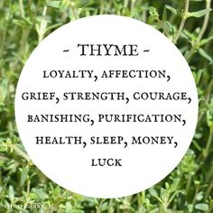 3 Best Herbs To Stop Insomnia And Sleep Better Wicca Herbs, Severe Insomnia, Herbs For Sleep, Herbs List, Green Witchcraft, Herbal Magic, Herbal Medicine, Healer, Witches