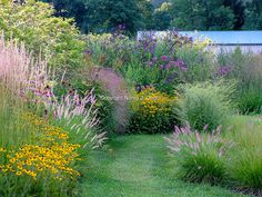 A mowed-grass path through the Arc Borders at Hayefield, with flowering perennials and ornamental grasses in late summer [©Nancy J. Ondra]
