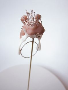 Contemporary Jewellery, Anatomical Cabinet of Curiosities by Anke de Kort.