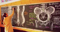 Grade 8 Anatomy class at Sunrise Waldorf School on Vancouver Island, Canada. Blackboard Drawing, Chalkboard Drawings, Chalk Drawings, Chalkboard Art, Seventh Grade, Eighth Grade, Waldorf Education, Art Education, Igcse Biology