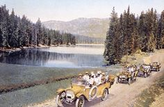 Yellow Busses with tourists, Yellowstone National Park, Wyoming (pinned by haw-creek.com)