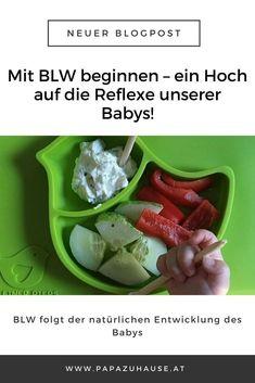 Beikost einführen schön und gut, doch wann können wir tatsächlich mit BLW beginnen? Diese Frage beantworte ich dir im zweiten Teil meiner BLW-Serie! Lass es dir schmecken, aber spucks bitte nicht gleich wieder aus. #blw #babyledweaning #beikost #breifrei Baby Led Weaning, Brei Baby, Green Beans, Vegetables, Babys, Dip, Kids Nutrition, Baby Meals, Kids Booster Seat