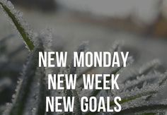 Motivation Monday! Start your week off right.