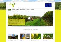 Sito web Dodich: #webdesign, #sitiweb, #grafica, #sitinternet, #padova, #social, #webmarketing, #immagineintegrata, #progettoeuropeo,