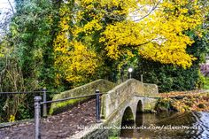 *Passed by this bridge on our way to Lacock Abbey Fifteen miles from Bath is the Lacock Village and Abbey. The village, which dates from...