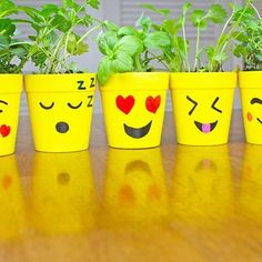 This just makes us 😂🤗😃😍😘 We 💕 what did with our diy planters. Have some emoji fun with your kids and make this fun planter project. Click the link to get supplies. Flower Pot Art, Flower Pot Design, Clay Flower Pots, Flower Pot Crafts, Clay Pot Crafts, Painted Plant Pots, Painted Flower Pots, Mason Jar Crafts, Bottle Crafts