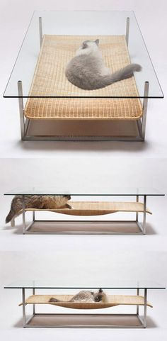 cat nap table