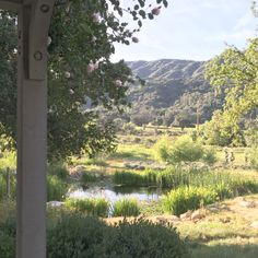 Patina Farm: View from the Guest House