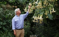 Mark Diacono joins one of our leading horticultural writers to explore the   heavenly scents that bring a garden to life