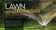 Watering Techniques for the Lawn