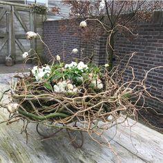 Easter Projects, Easter Crafts, Floral Centerpieces, Floral Arrangements, Flower Factory, Deco Floral, Nature Decor, Deco Table, Garden Statues