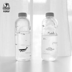 Buy Ocean series Seal Whale Seal Glass Water Bottle with Sleeve Creative Sport Bottles Camping Bottle Tour Drinkware Infused Water Bottle, Glass Water Bottle, Balloon Dog Sculpture, Wall Mounted Coat Hanger, Cheap Water Bottles, Oceans Series, Kitchen Wall Art, Kitchen Dining, Ceramic Cups