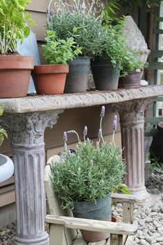 Potting table with herbs; a weekend project.