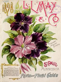 Front cover of L.L. May & Co 'Farm and Floral Guide' 1898 with an illustration of 'The improved Jackmanii Clematis.' St Paul. Minnesota. U.S. Department of Agriculture,vintage printable