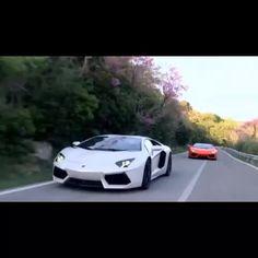 "Super Cars by geton — http://geton.goo.to ""Predator vs Predator .    ..."