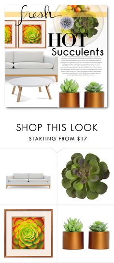 """""""Succulents no. 2"""" by ellenawaters ❤ liked on Polyvore featuring interior, interiors, interior design, home, home decor, interior decorating, Rove Concepts and Envi:"""