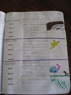 Science Notebooking ideas and examples