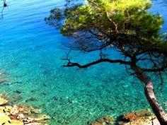 losinj, croatia Travel Around The World, Around The Worlds, Croatian Islands, Thousand Islands, Adriatic Sea, Pula, Central Europe, Archipelago, Homeland