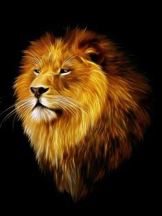 I want a lion tattoo