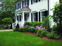 This Old House**** Foundation Planting Basics Front Porch Landscape, Evergreen Landscape, House Landscape, Landscape Plans, Landscape Designs, Garden Shrubs, Lawn And Garden, Garden Bed, Outdoor Landscaping