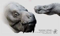 Gorgonops | Gorgonops