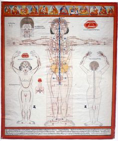 This picture is from the Tibetan Medical tantra. It is based on knowledge that is thousands of years old. This image shows the intimate connection between sexual energy and mind.