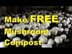 This super simple tutorial is for the mushroom lover, as well as the gardener. Organic mushroom compost is an expensive resource, but a very beneficial one. ...