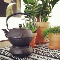 Nice new teapot! - Jang by Bredemeijer.