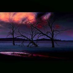 Three Trees, Salton Sea,  Niland, California  I'm blessed to teach art photography, Adobe Photoshop and Lightroom at the California Center for Digital Arts  Www.centerfordigitalarts.com www.bobkillen.com  #artoftheday #artofvisuals #earthpix #angels42 #th